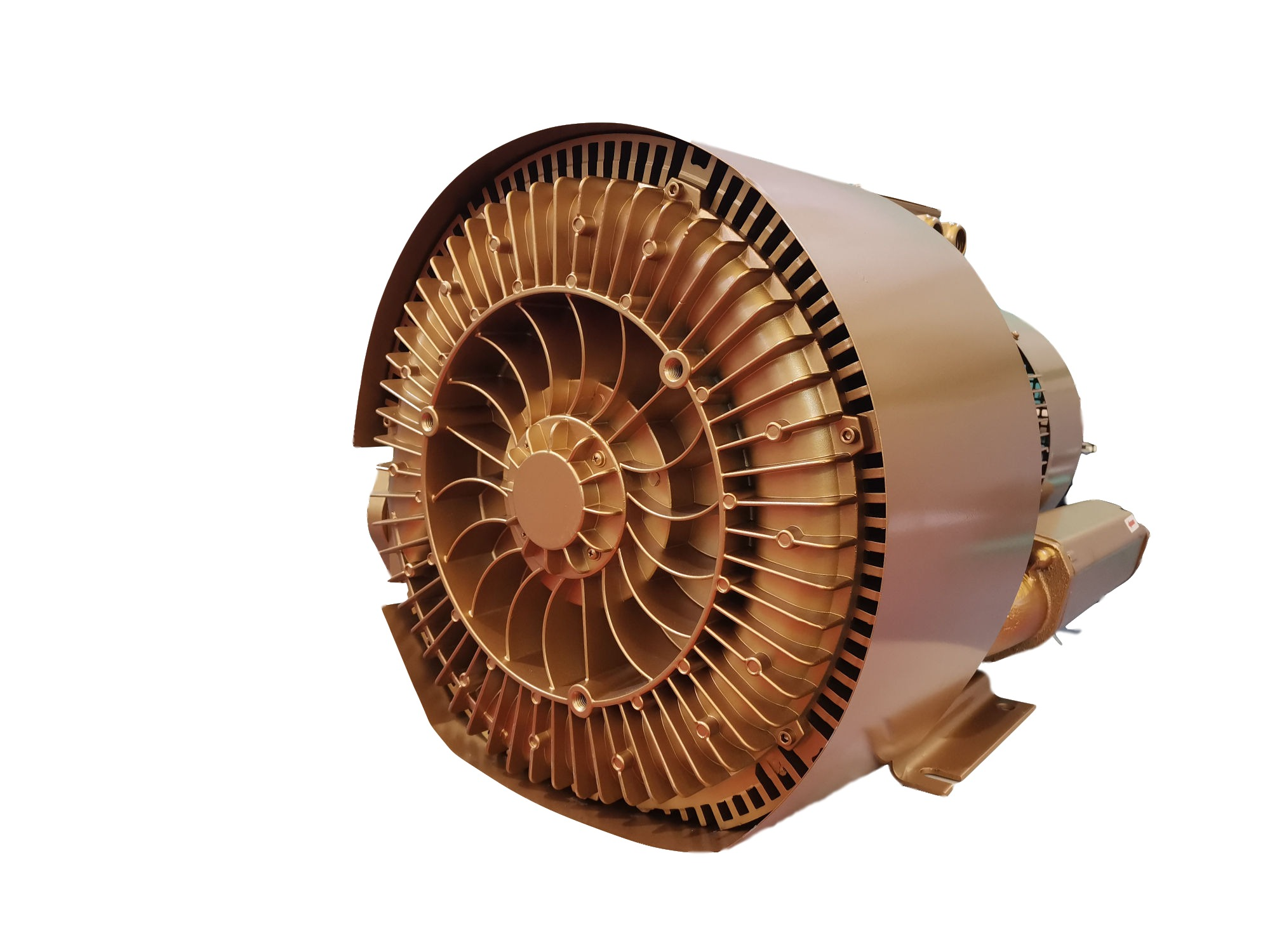 Double Impeller Best Quality Side Channel Blower for Medical Equipment
